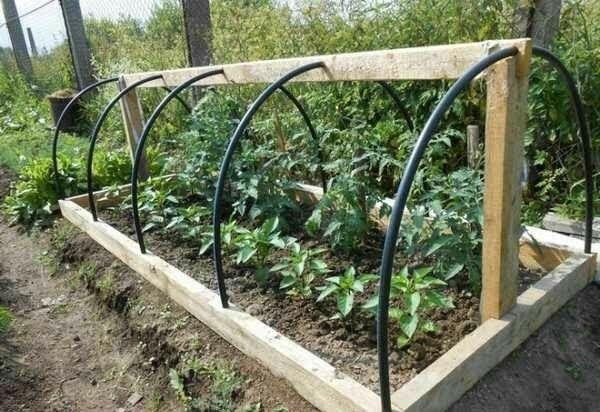 Pin De Claudia Torres En Tunel Jardineria De Invernadero Jardin De Vegetales Plantadores Exteriores