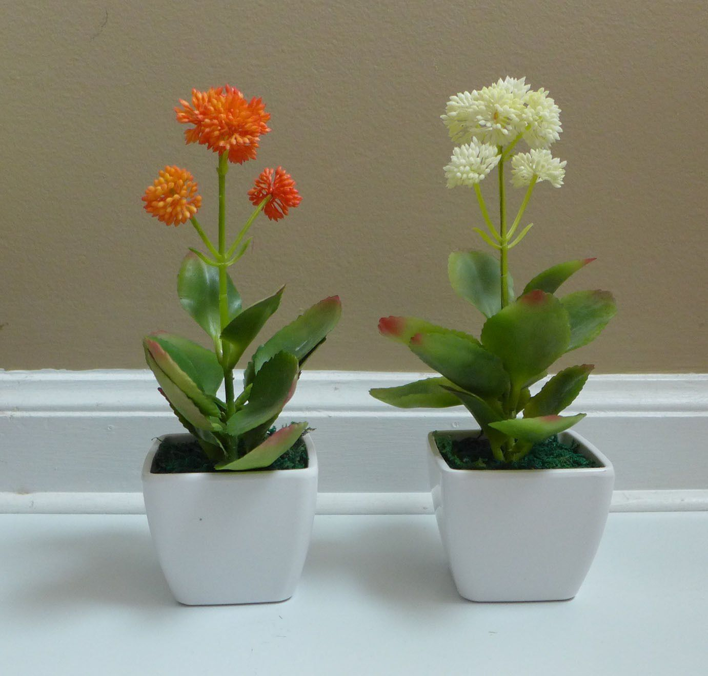 Small Artificial Desert Flower Succulent Mini Potted Plants Artificial Trees  And Shrubs For Decoration Table Office