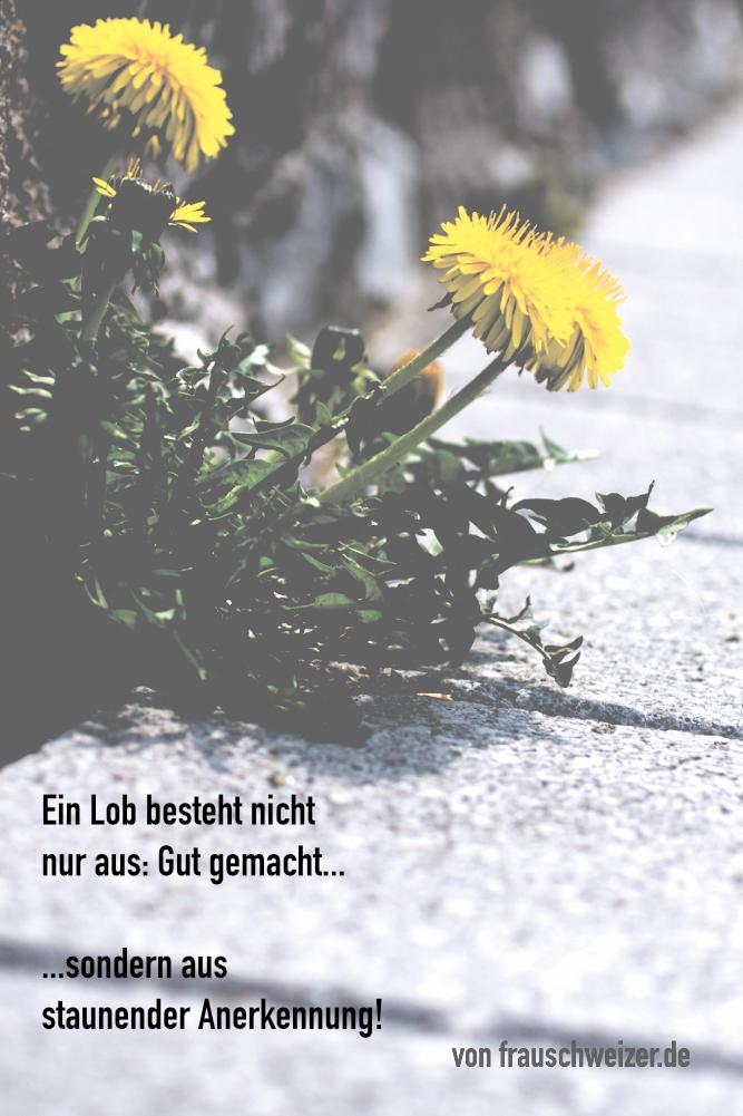 lob sprüche Spruchreif von FrauSchweizer   Lob   Texte Sprüche   Pinterest  lob sprüche