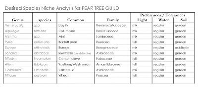 pear tree hd analysis