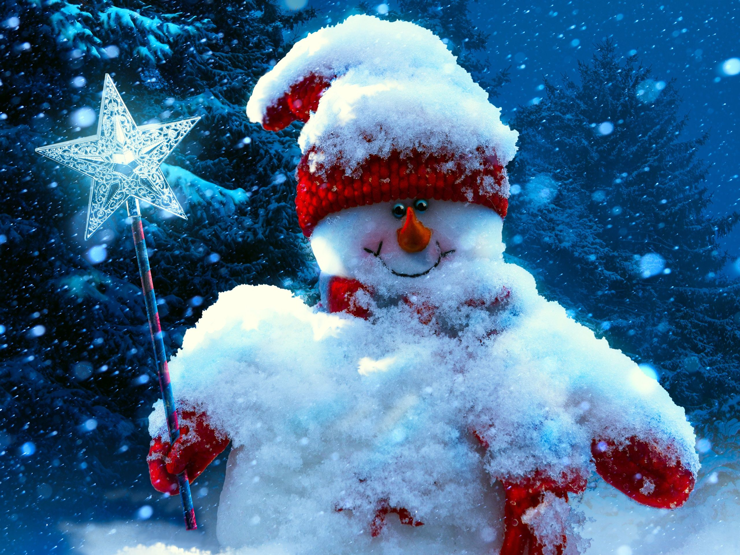 Noel Nouvel An Bonhomme De Neige Hiver Fonds D Ecran 2560x1920 Bonhomme De Neige Bonhomme De Neige De Noel Noel