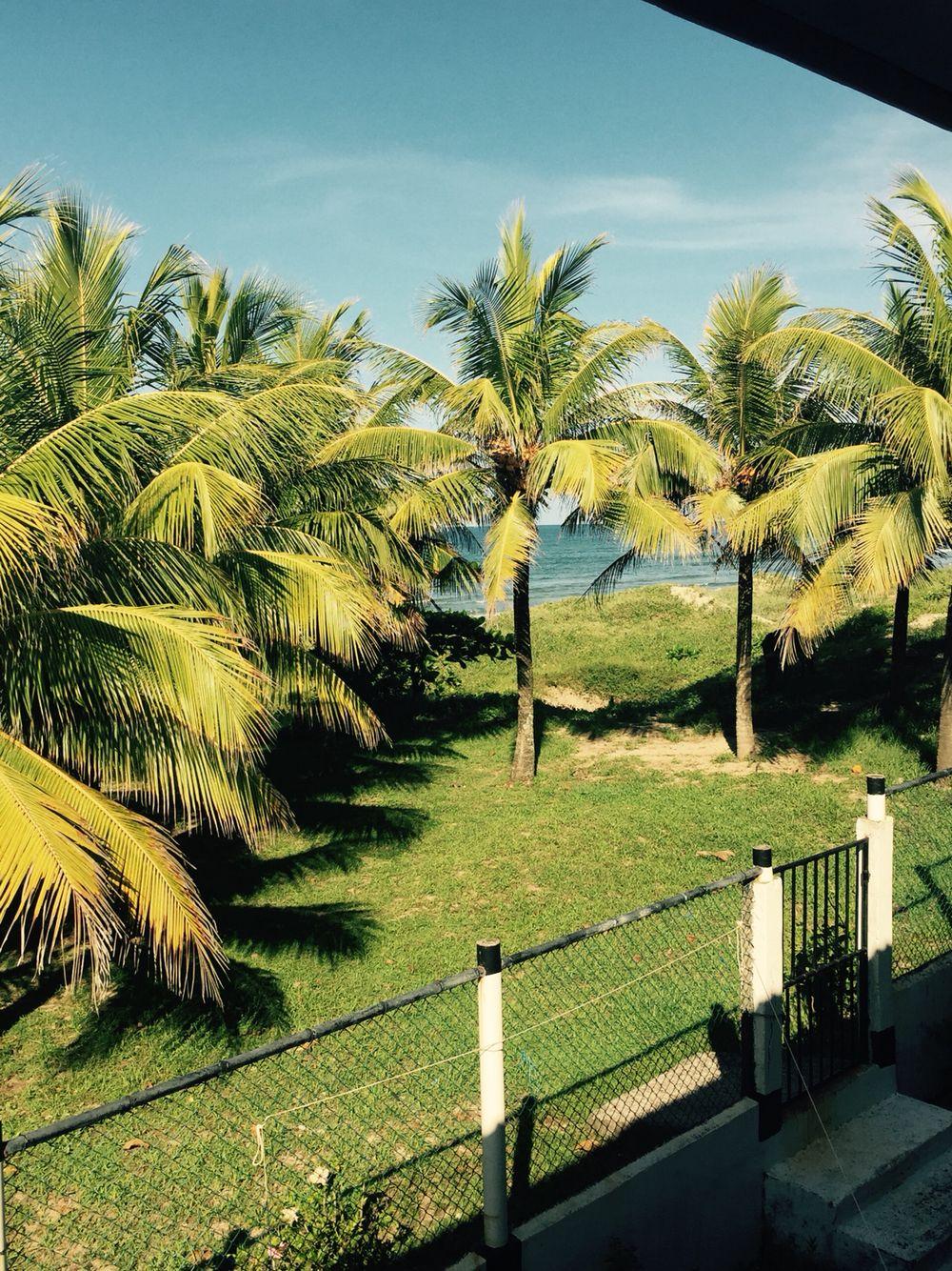 Limon Honduras Places Outdoor Travel