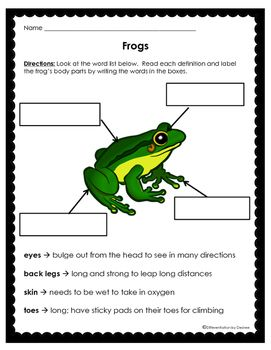 frog parts