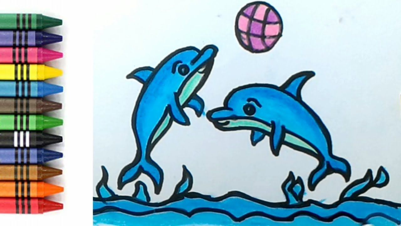 Cara Menggambar Dan Mewarnai IKAN Lumba Lumba Untuk Anak TK