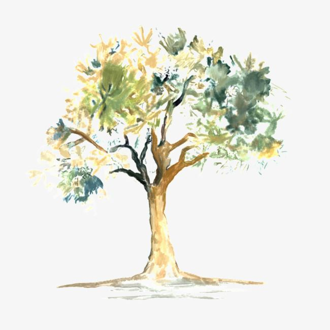 Acuarela Tree Con Imagenes Ilustracion Acuarela Acuarela
