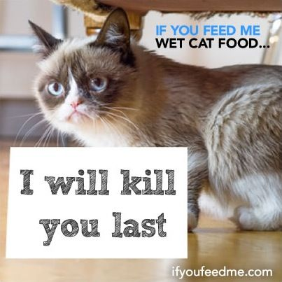 Is Friskies Cat Food Bad For Your Cat