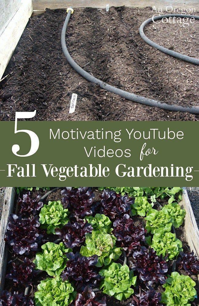 fall gardening ideas 5 motivating videos for vegetables