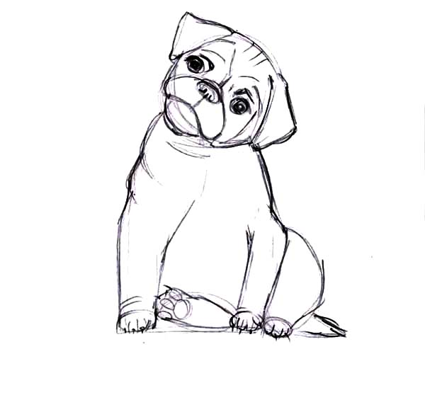 Boxer Coloring Page Free Boxer Online Coloring Dog Coloring Page Dog Quilts Dog Template