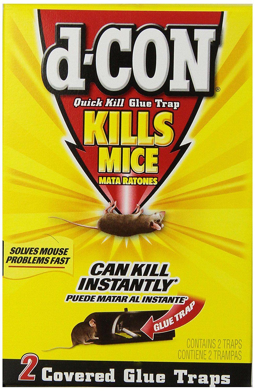 Dcon quick kill glue trap 2 count
