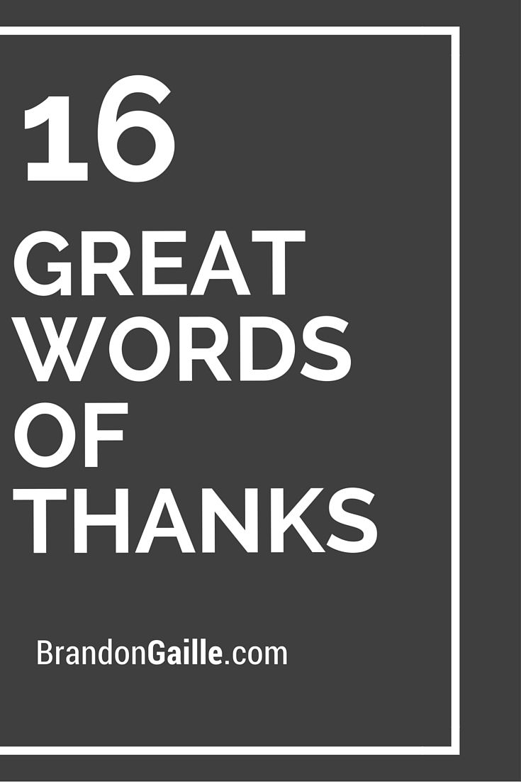 16 Great Words Of Thanks Card Quotes Verses Sayings