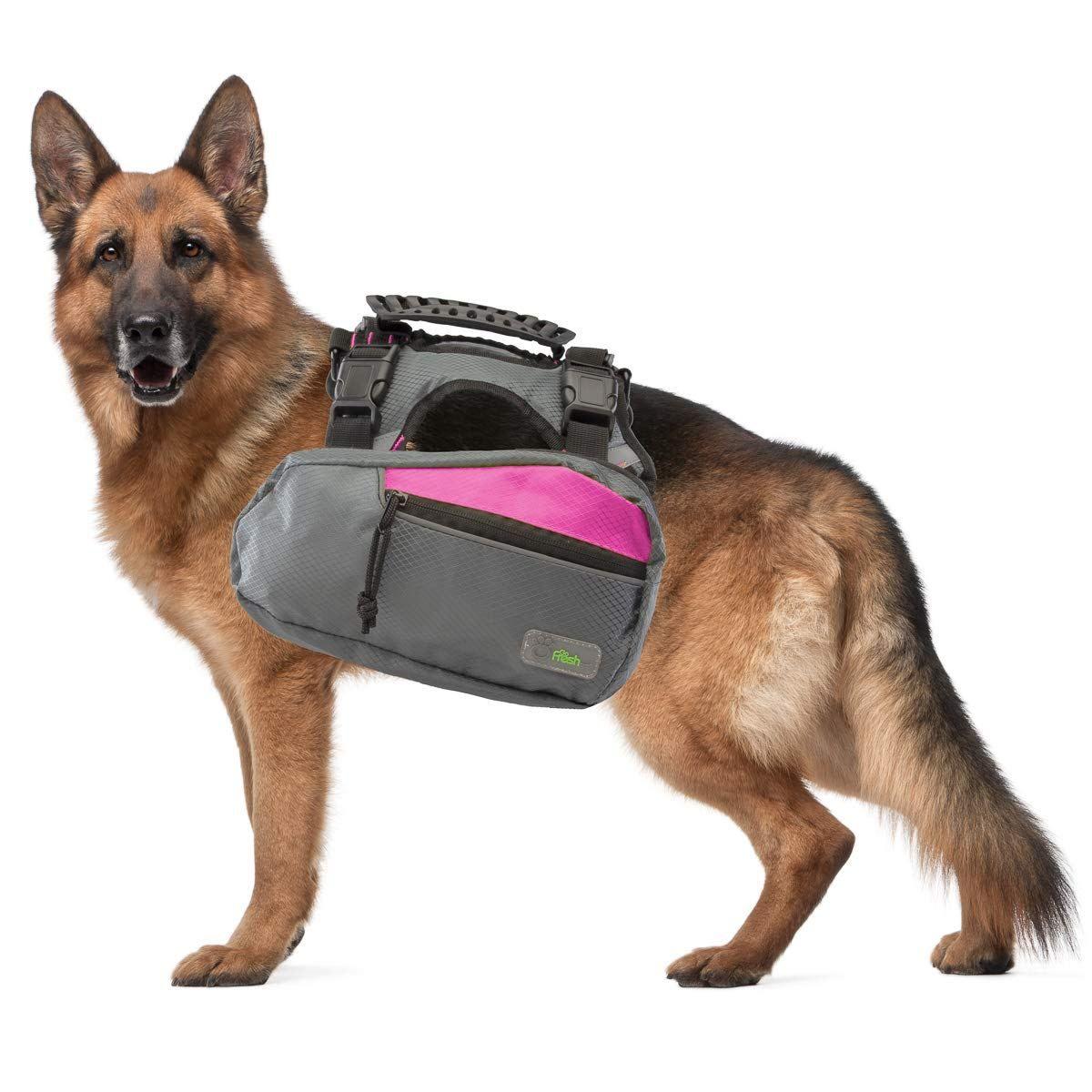 Go Fresh Pet Trail Pack Backpack Harness Dog Walking Hiking