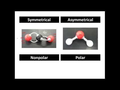 Polar And Non Polar Covalent Molecules Polar Vs Nonpolar Youtube Playlist Science Chemistry Chemistry Study Chemistry Notes