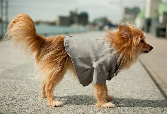 The Crew Dog Blazer by TheRoverBoutique on Etsy