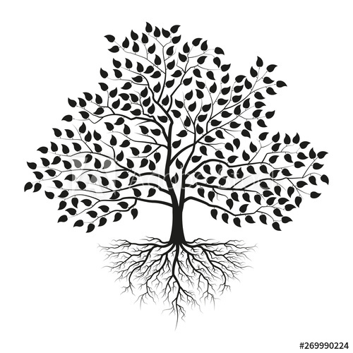 Tree Of Life Black White Stock Photos Royalty Free Images Vectors Video Tree Of Life Artwork Tree Roots Tattoo Tree Of Life Tattoo