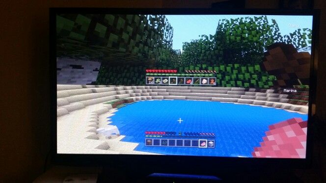 What shoud @TheSouffleGirl7 and I make on minecraft?