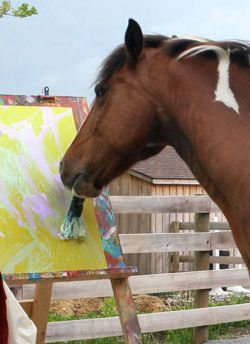 Watch Painted Ponies Full-Movie Streaming