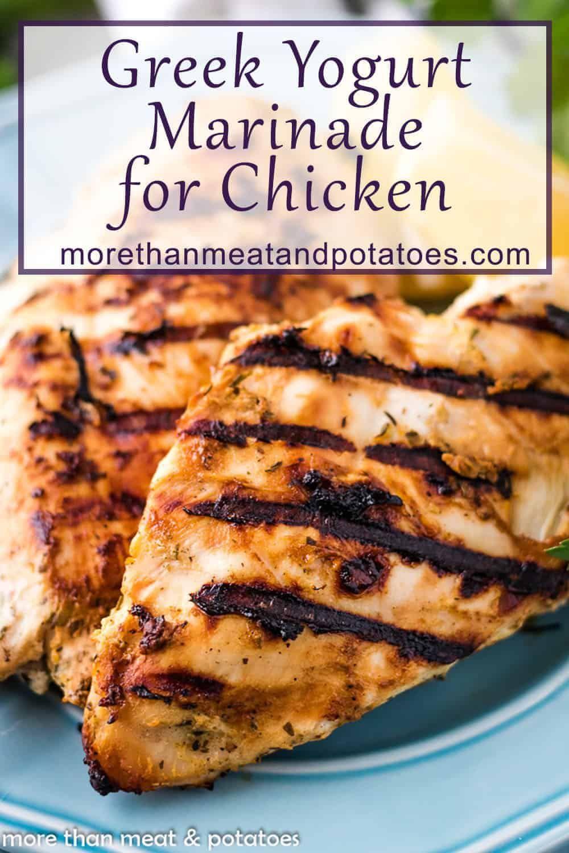 21 Day Fix Chicken Recipe Greek Yogurt Recipes Greek Yogurt Chicken Yogurt Recipes