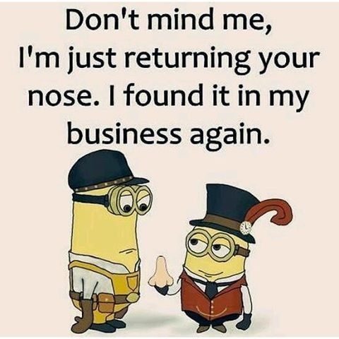 #Minions #Quotes Don't Mind Me, I'm Just Returning Your ...