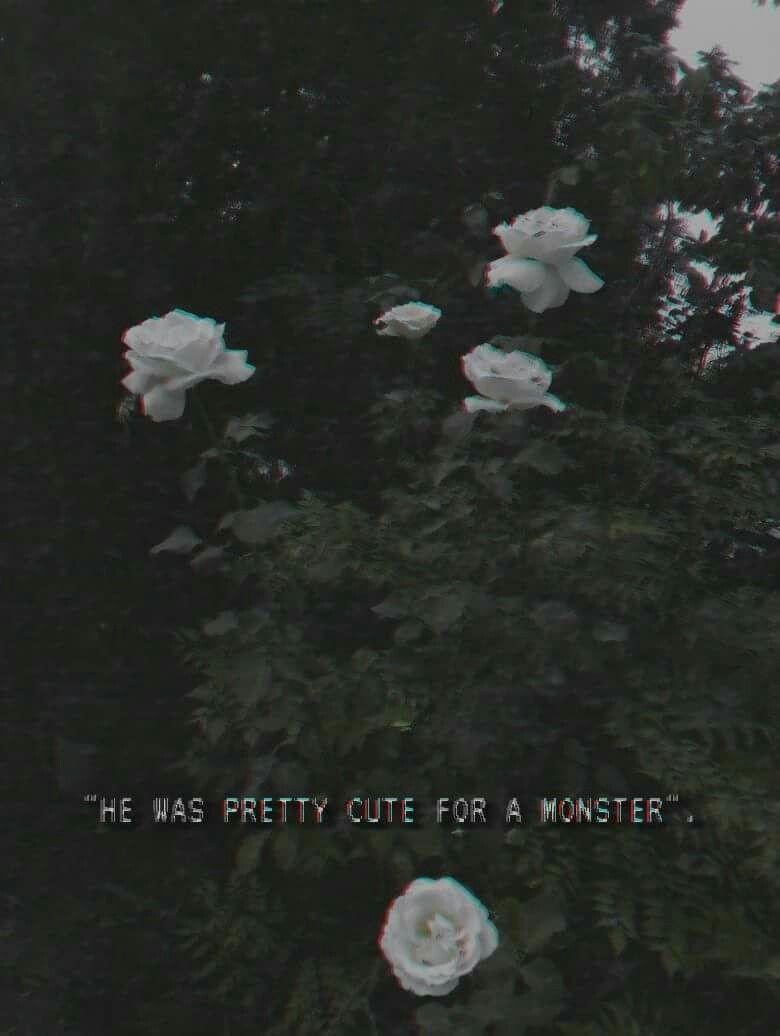 Vhs Grunge Tumblr Flowers Aesthetic Aesthetic Grunge Tumblr
