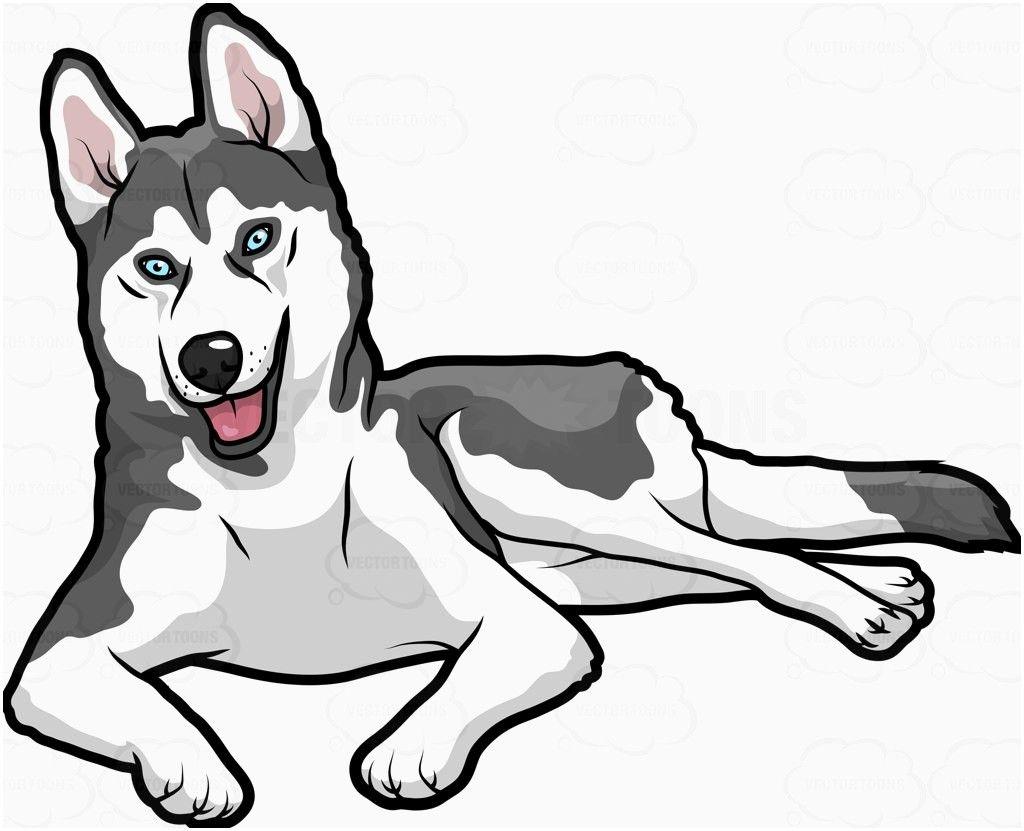 Husky Dog Cartoon Png Tim Với Google Milye Risunki Risunki Devushki Risunki