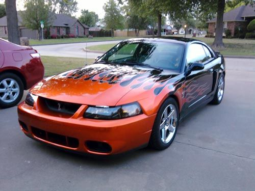 2004 Ford Mustang Svt Cobra For Sale 2004 Ford Mustang Mustang Cobra Cobra For Sale
