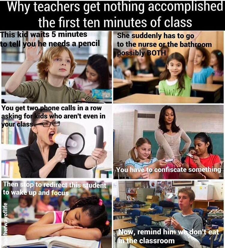 Pin By Lexi Tullbane On Teacher Tools Teaching Memes Teacher Humor Teacher Quotes Funny