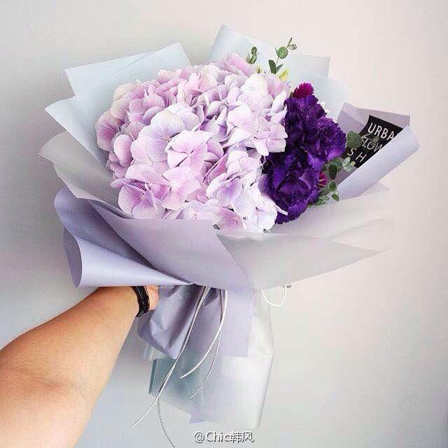 pinterest: @lxlprxncesss ✨ | plants | Pinterest | Flowers, Flower ...