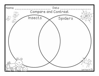 Comparing and Contrasting Insects and Spiders Activities