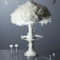 A Sculpture Of A Mushroom Cloud Made From Feathers For An Article On The  Threat Of