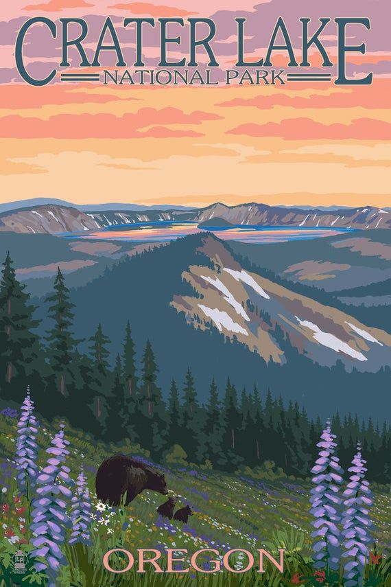 Crater Lake National Park, Oregon - Spring Flowers and Bear Family (Art Prints, Giclees, Posters, Wood & Metal Signs, Tote Bag, Towel)