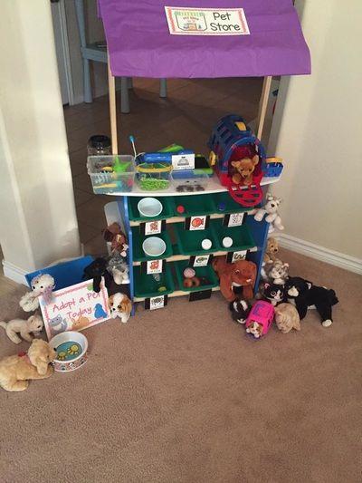 Preschool Pets Theme Pet Store Ideas Pet Store Pet Vet