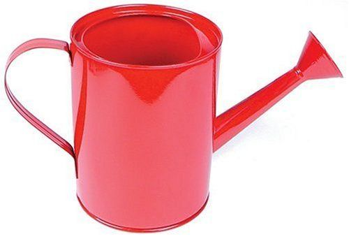 Metal Watering Can For Office Plants