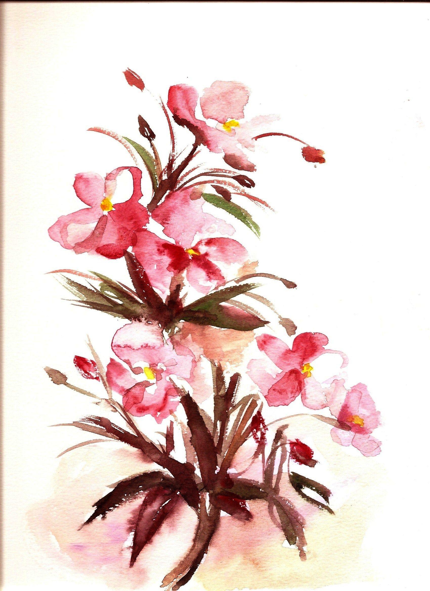 Alegria Del Hogar Flores Acuarela Alegria Del Hogar Acuarela