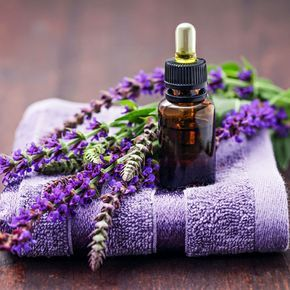 Shampoo zum selber machen, ein einfaches Rezept zur natürlichen Haarpflege - Rosmarin-Salbei Shampoo gegen Schuppen ...