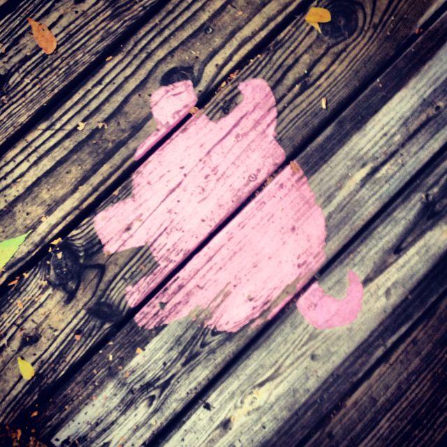 Follow The Pigs! Bubba's BBQ Eureka Springs, AR