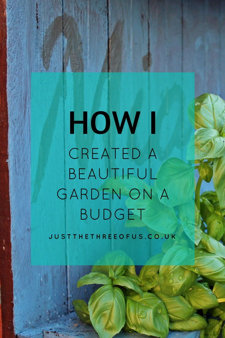 How I Created A Beautiful Garden On A Budget is part of garden Kids Budget - I've always wanted a beautiful garden, but I've never had the inclination to embrace our outdoor space until we moved into our current home last year