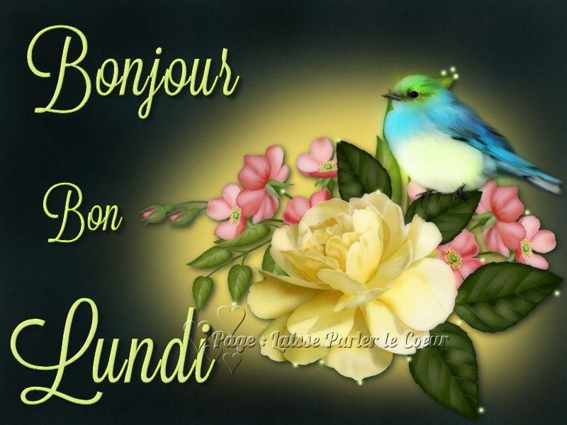 Bonjour Bon Lundi Lundi Fleurs Oiseau Bon Lundi Images