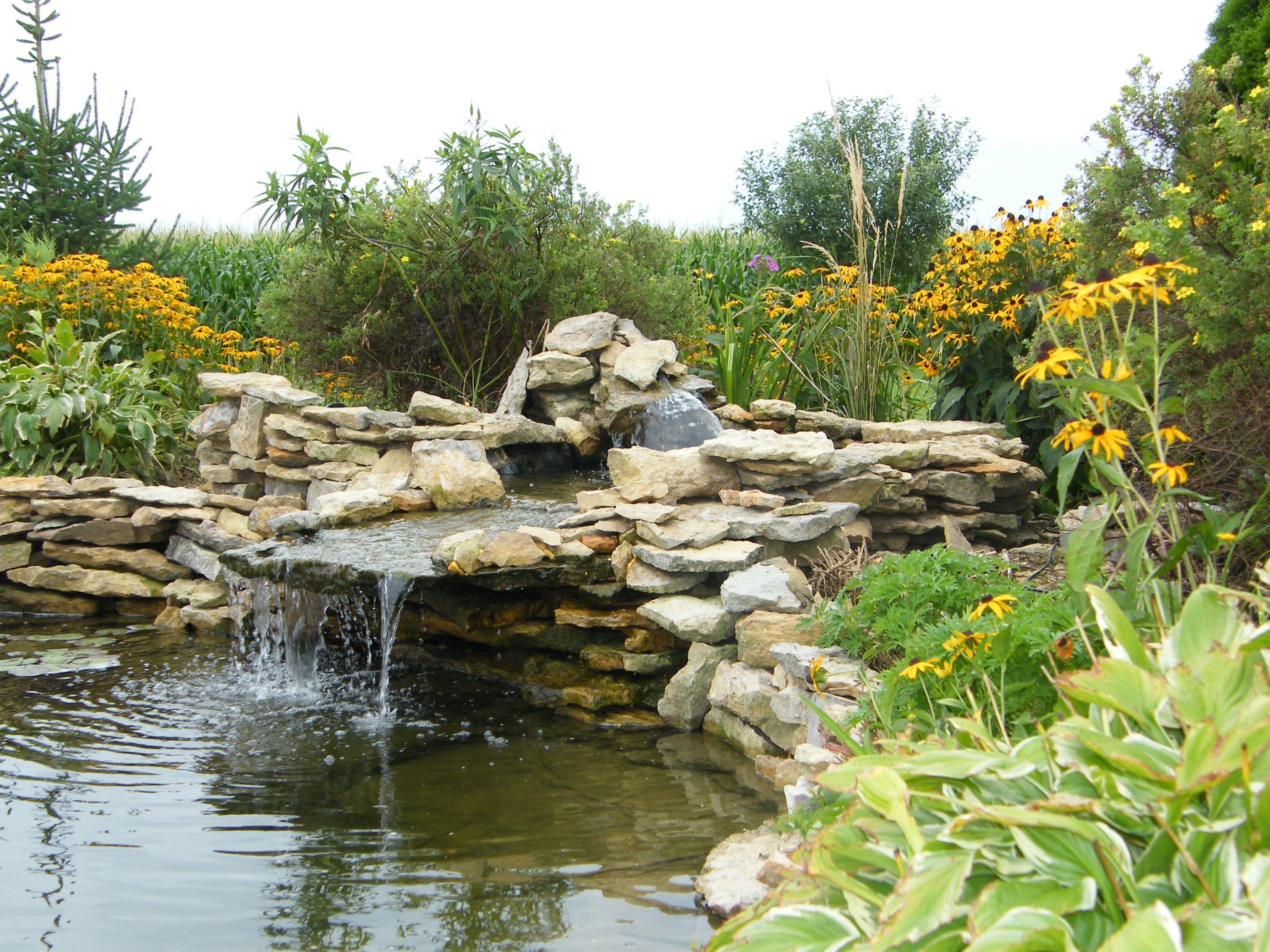 My pond | Backyard garden, Water features, Outdoor