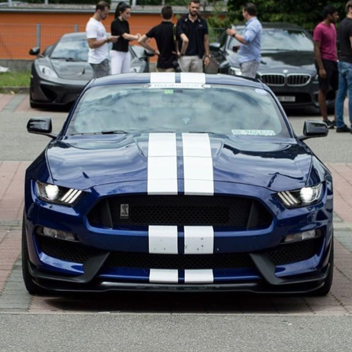 """Dreamer-garage: """"Ford Mustang Shelby GT350by Nm"""