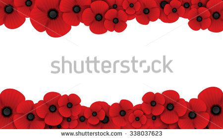 Poppy flower remembrance day white background independence day poppy flower remembrance day white background mightylinksfo