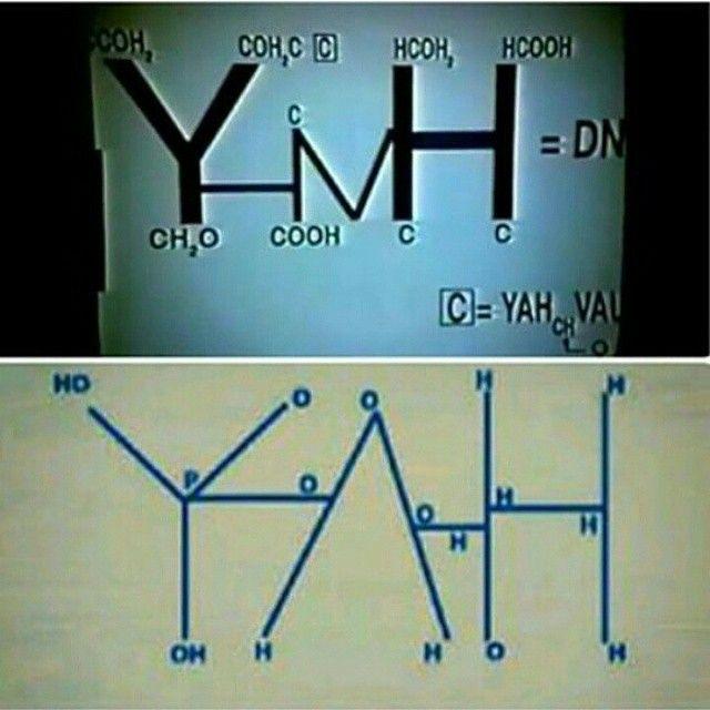 Symbol For Human Dna Yah End Of Line Pinterest Human Dna