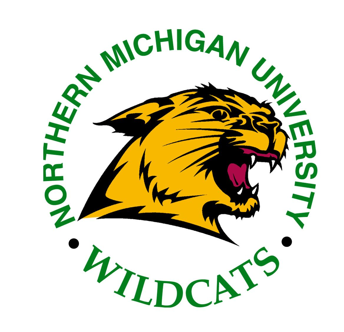 Northern michigan nmu wildcats soccer ball shaped area rug welcome