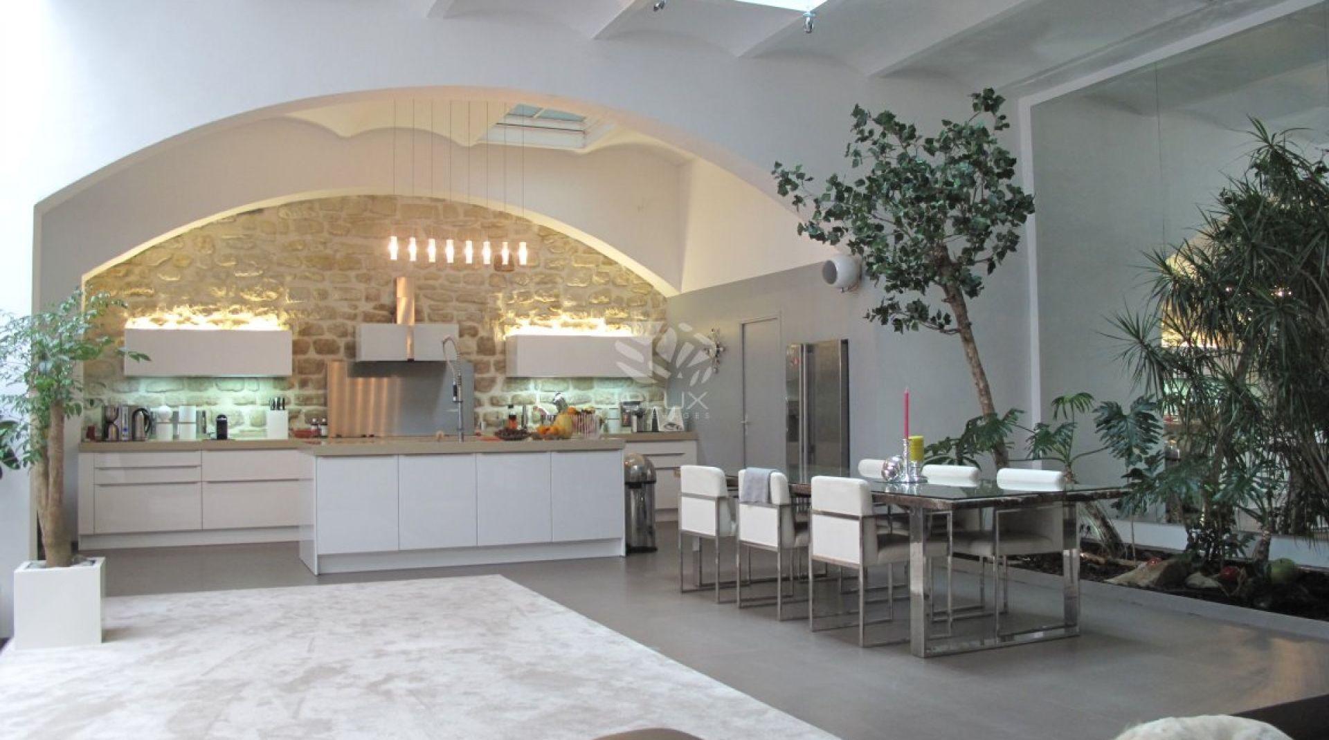 15) Grand loft avec terrasse. Salon, cuisine ouverte en rdc. 15