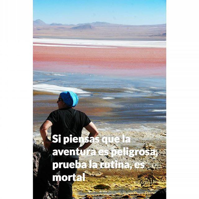 Feliz Lunes!! #bolivia#lagunacolorado#lagunacolorada#southamerica #flamingo#pink#lake#beautifuldestinations #quotes #travelquotes #frasesviajeras #travel #viajar #visitbolivia #igersbolivia #iatiporelmundo #igersviajeros #instatravel #instgood #wanderlust #wanderfulworld #adventures #aventura #frasesviajerasviajatu