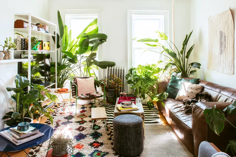 plant room ideas on 9 Must Follow Instagram Accounts For Plant Lovers Living Room Plants Room With Plants Plant Decor Indoor