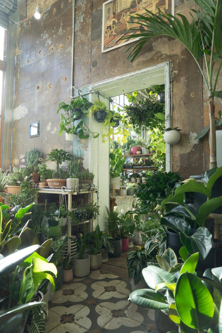Conservatory Archives In London With Images Inside Garden