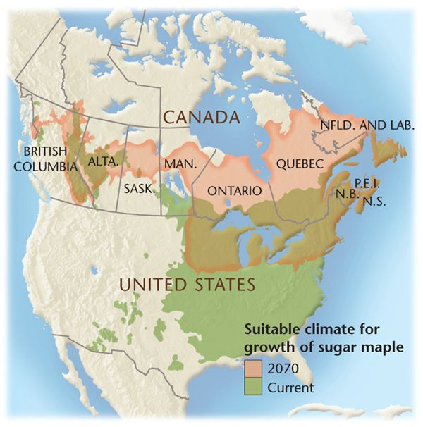 Map of the shifting region of sugar maple growthMap ...