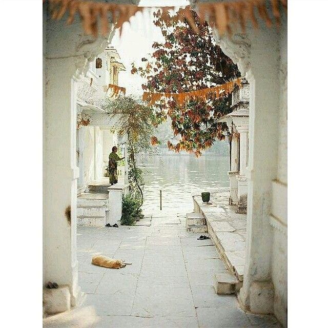 FOLLOW SOMEWHERE I WOULD LIKE TO GO @somewhereiwouldliketogo #Udaipur #India #rajasthan #somewhereiwouldliketolive