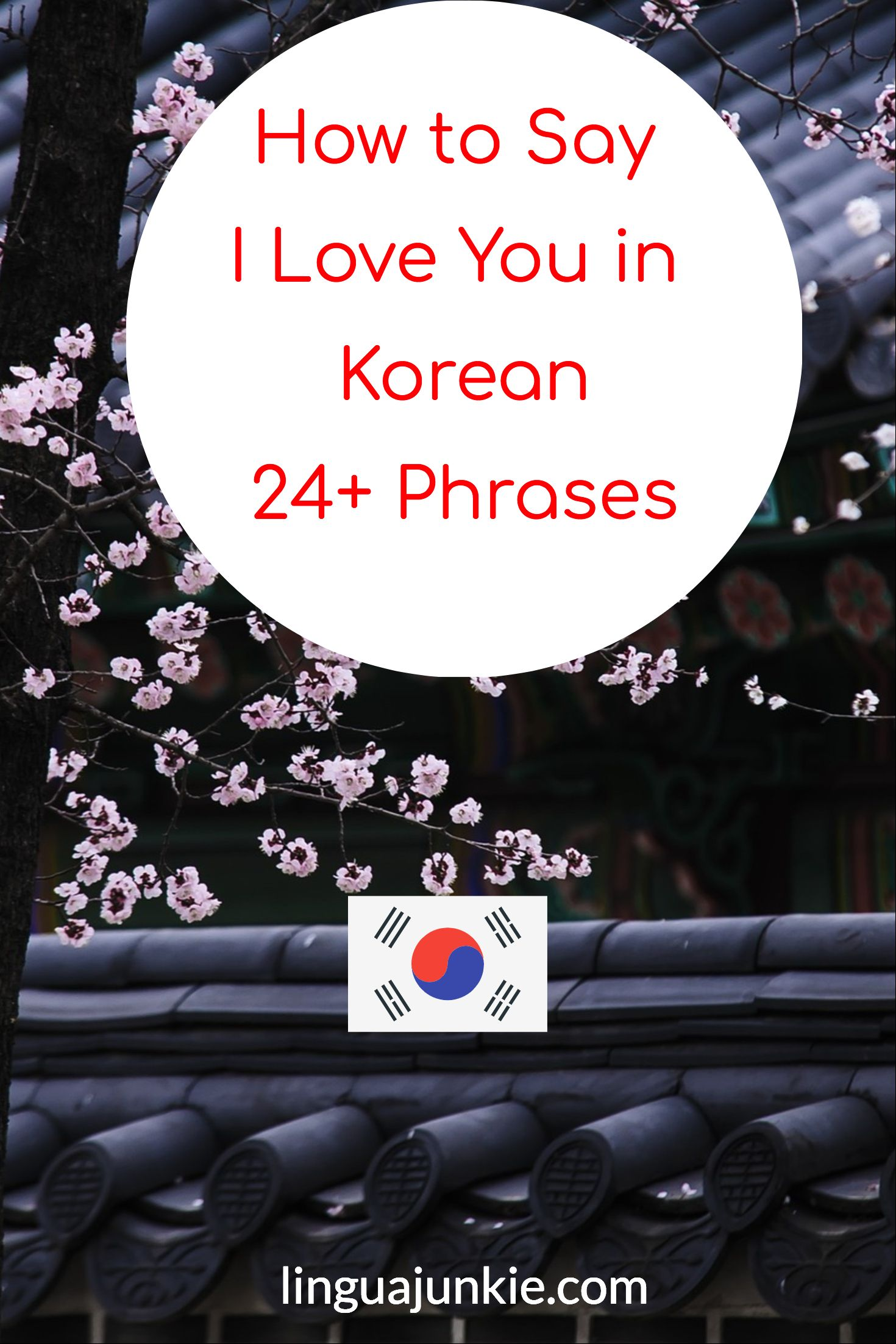 24 Ways to say I Like You & I Love You in Korean