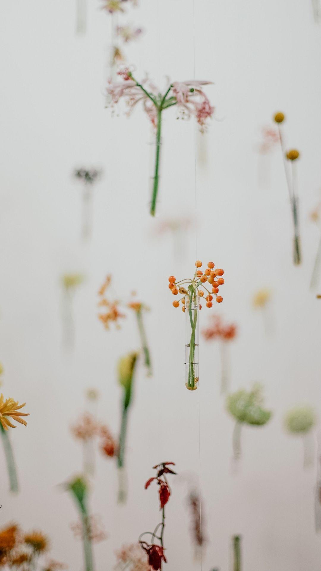Minimal Hanging Flowers 1080x1920 Wallpaper Spring Wallpaper Iphone Wallpaper Tumblr Aesthetic Flower Wallpaper